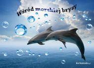 eKartki Zwierzęta Morska bryza,