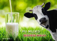 eKartki elektroniczne z tagiem: Kartki zwierzęta Pij mleko,