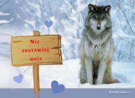 eKartki Zwierzęta Samotny,