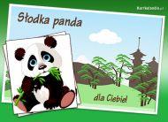 eKartki Zwierzêta S³odka panda,