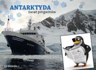 eKartki Zwierzêta ¦wiat pingwinów,