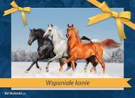 eKartki Zwierzêta Wspania³e konie,