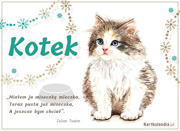 eKartki elektroniczne z tagiem: Kotek Kotek,