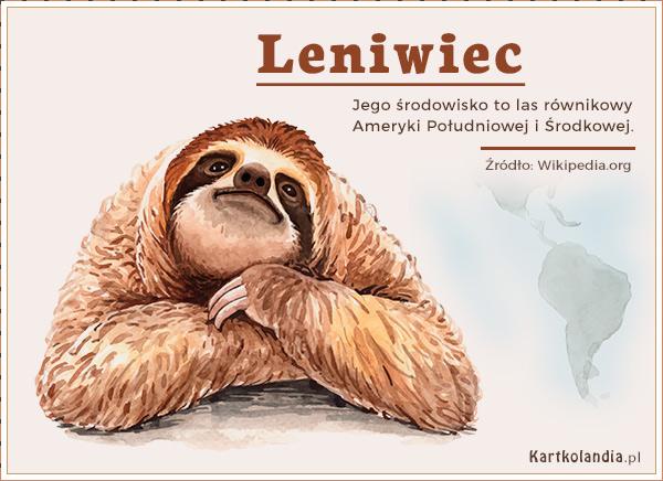 eKartki elektroniczne z tagiem: Kartki zwierzęta Leniwiec,