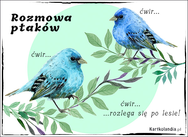 eKartki elektroniczne z tagiem: Ptak Rozmowa ptaków,