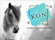 eKartki Zwierzęta Koń wierny towarzysz,