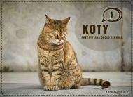 eKartki Zwierzęta Kot,