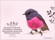 eKartki Zwierzęta Ptak,