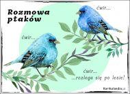 eKartki Zwierzęta Rozmowa ptaków,