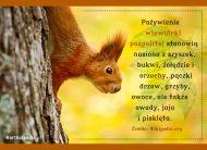 eKartki elektroniczne z tagiem: Kartki z muzyką Smakołyki wiewiórki,