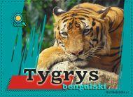 eKartki elektroniczne z tagiem: Kartki z muzyką Tygrys bengalski,