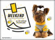 eKartki elektroniczne z tagiem: e-Kartka z psem Weekend,