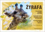 eKartki elektroniczne z tagiem: Kartki z muzyką Żyrafa,