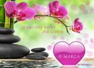 eKartki elektroniczne z tagiem: e-Kartki z życzeniami dla Kobiet Magiczny kwiat dla Ciebie,