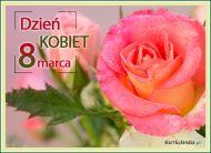 eKartki elektroniczne z tagiem: Kwiaty Dla wyjątkowej kobiety,