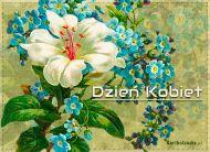 eKartki Dzień Kobiet Kwiaty pełne życzeń!,