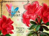 eKartki Dzień Kobiet Kwiaty składają życzenia!,