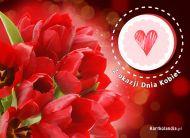 eKartki elektroniczne z tagiem: Kwiaty Tulipany na Dzień Kobiet,