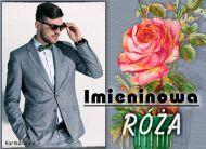 eKartki elektroniczne z tagiem: e Kartki z muzyką Imieninowa róża,
