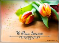 eKartki Imieninowe Imieninowe tulipany,