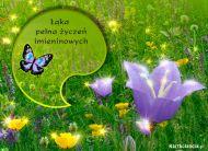 eKartki Imieninowe Łąka pełna życzeń,