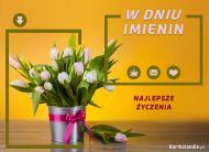 eKartki elektroniczne z tagiem: Kartki imieninowe darmo Tulipany dla Ciebie,