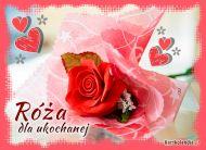 eKartki elektroniczne z tagiem: Róża Imieninowa kartka dla ukochanej!,