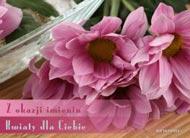 eKartki elektroniczne z tagiem: Kartki darmowe Kwiaty dla Ciebie,
