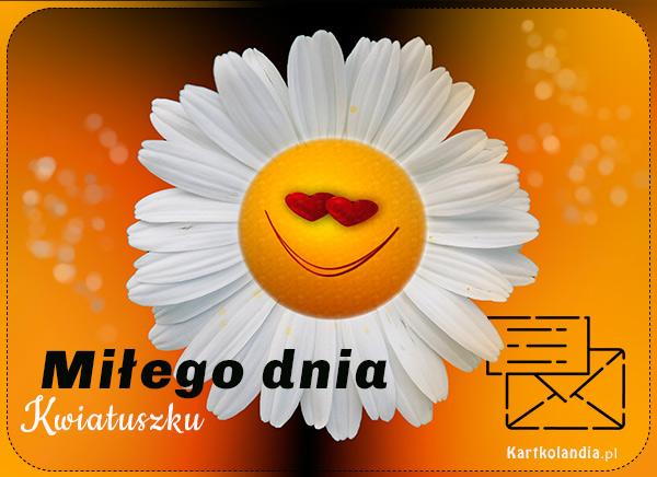 eKartki elektroniczne z tagiem: e-Kartka pozdrowienia Miłego dnia Kwiatuszku,