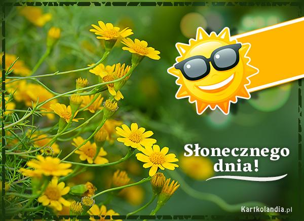 eKartki elektroniczne z tagiem: e-Kartka pozdrowienia Słoneczne pozdrowienia!,