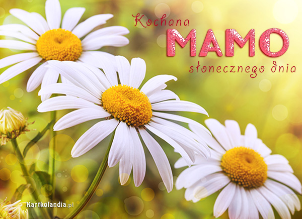 Słoneczny dzień dla Mamy