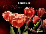 eKartki Dzień Matki Dziękuję Ci Mamo,