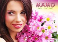 eKartki Dzieñ Matki Mamo, kwiaty dla Ciebie,