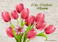eKartki Dzień Matki Ciepłe i przyjazne życzenia,