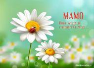eKartki Dzień Matki Dużo szczęścia i radości,