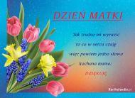 eKartki Dzień Matki Dziękuję,
