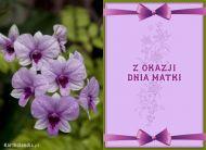 eKartki Dzień Matki e-Kartka Dzień Matki,
