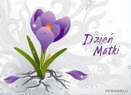 eKartki Dzieñ Matki Kochanej Mamie,