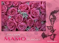 eKartki Dzień Matki Przyjmij Mamo te róże,