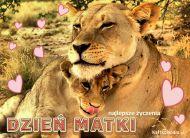 eKartki Dzień Matki Z wyrazami miłości,