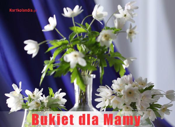 Bukiet dla Mamy