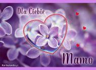 eKartki elektroniczne z tagiem: Życzenia dla Mamy Dla mojej Mamy,