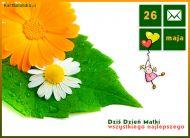eKartki elektroniczne z tagiem: Życzenia dla Mamy Dziś Dzień Matki,
