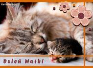 eKartki elektroniczne z tagiem: Życzenia dla Mamy e-Kartka Dzień Matki,