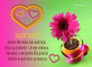 eKartki Dzień Matki Kolorowy Dzień Matki,