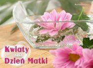 eKartki Dzieñ Matki Kwiaty na Dzieñ Matki,