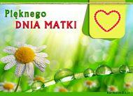 eKartki elektroniczne z tagiem: Życzenia dla Mamy Pięknego Dnia Matki,