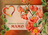eKartki elektroniczne z tagiem: Życzenia dla Mamy Poczta kwiatowa,