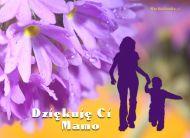 eKartki elektroniczne z tagiem: e Pocztówki online Podziękowanie dla Mamy,