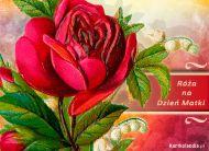 eKartki elektroniczne z tagiem: Życzenia dla Mamy Róża na Dzień Matki,